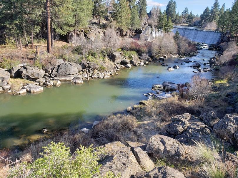 74 CFS Below the Dam
